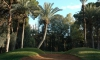 Golf Marrakech_005