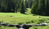 meribel_golf_063